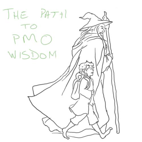 PMO Wisdom